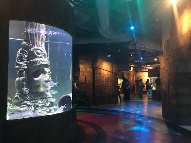 Great Maya Reef exhibit