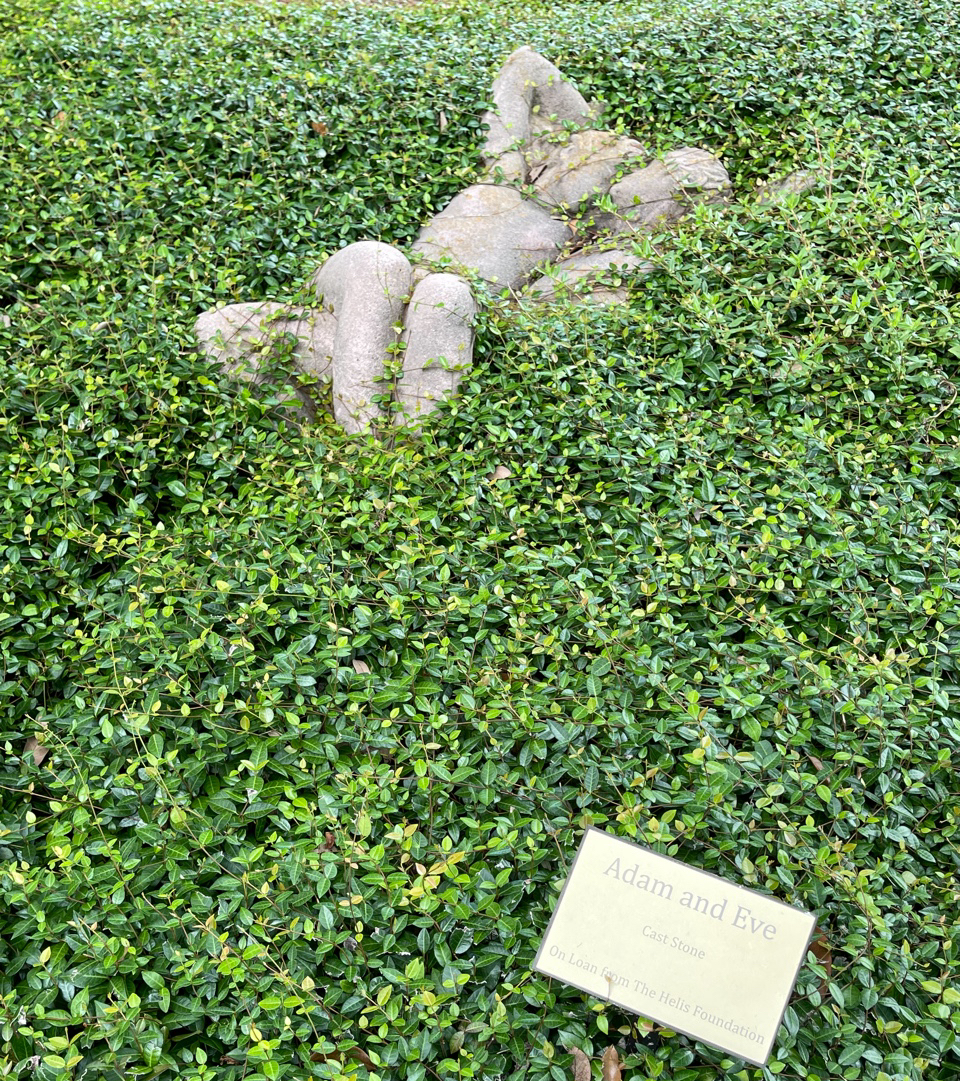 """The cast stone sculpture named """"Adam and Eve"""" lie in a bed of greenery in the Enrique Alférez Sculpture Garden."""